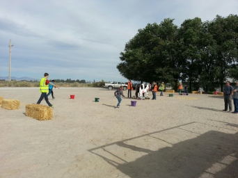 Ag Olympics - plant seeds, feed cows, milk, and more!