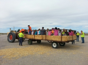 Hay ride at Nye Dairy