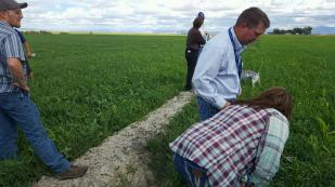 delta-soil-health-workshop-field-tour-3